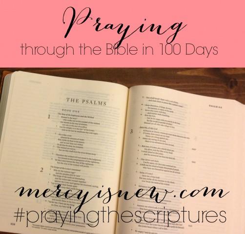 Praying-through-the-Bible-Square2--502x480